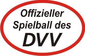 Volleyball-DVV-Spielball