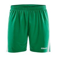 Craft Pro Control Shorts